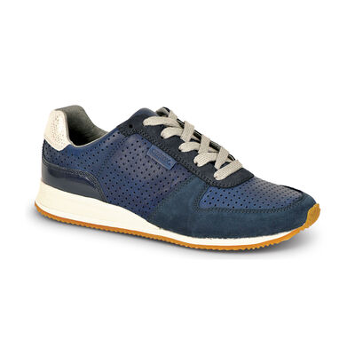 Daphne Sneaker